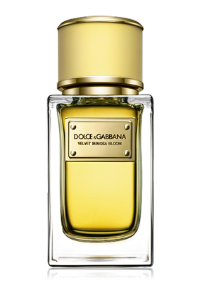 Dolce&Gabbana Velvet Mimosa Bloom edp 150mlדולצ'ה וגבאנה וולווט בשמי בוטיק יוניסקס